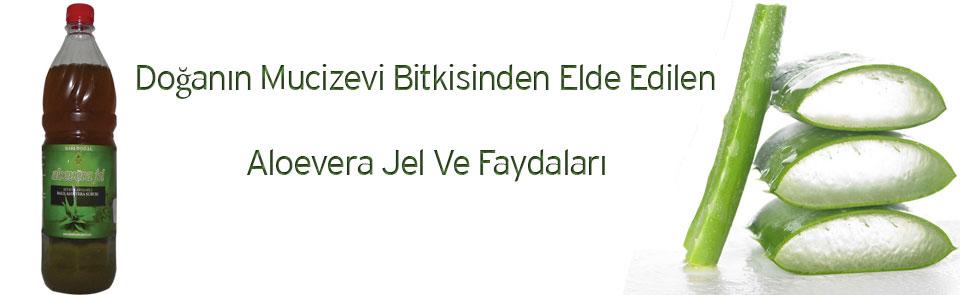Aloe Vera Jel Ve Faydaları