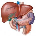 Karaciğer Hastalıkları İçin Aloe Vera Jel