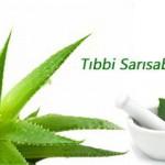 Tıbbi Sarısabır (Aloe Vera) İçeriği Ve Üretimi