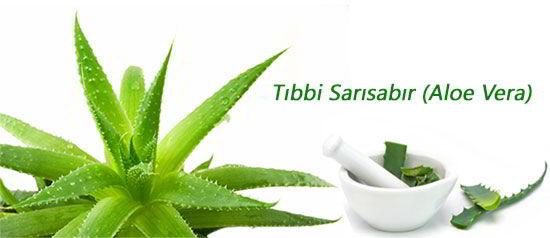 tibbisabir