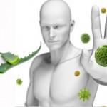 Bağışıklık Sistemini Güçlendirmek İçin Aloe Vera